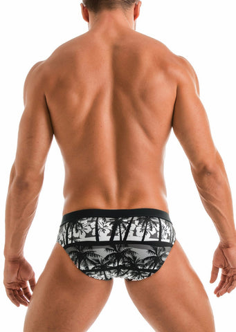 SWIMMING BRIEFS 1915s2