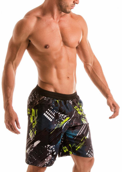 MEN BOARD SHORTS 1910p4