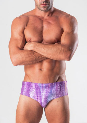 Swimming Briefs 1506s2