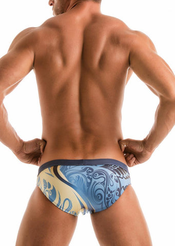 SWIMMING BRIEFS 1904s2