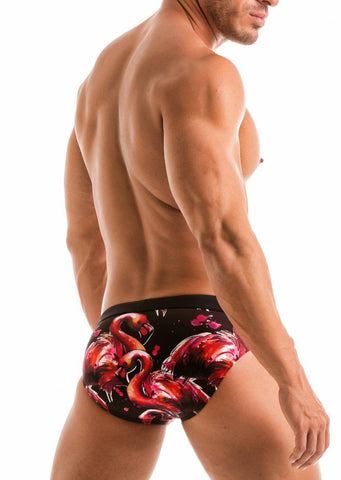 SWIMMING BRIEFS 1914s2