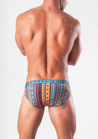 Swimming Briefs 1509s2
