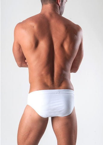 Swimming Briefs 1516s2