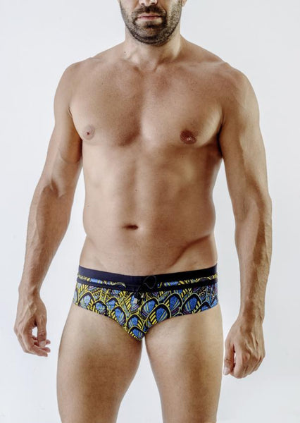 Swimming Briefs 1713s2