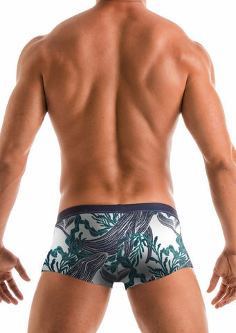 SWIMMING TRUNKS 1902b2
