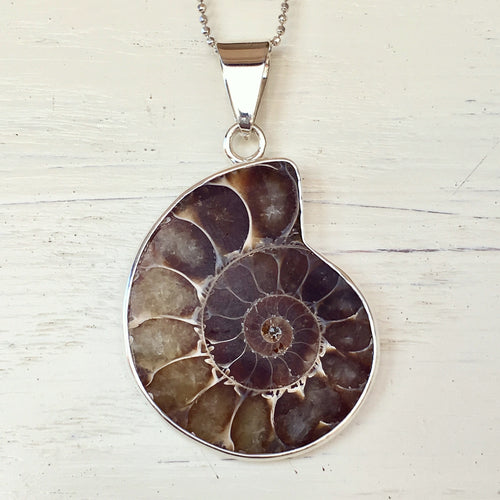 Ammonite and Silver Pendant