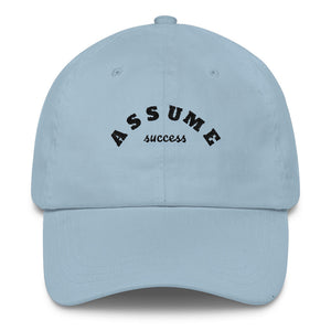 Assume Success Hat