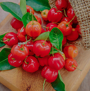 Photo of a group of fresh Acerola fruit and stems being emptied on a cutting board from a hemp bag