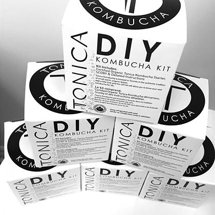 Tonica - DIY Kombucha Kit (Available in Winnipeg)