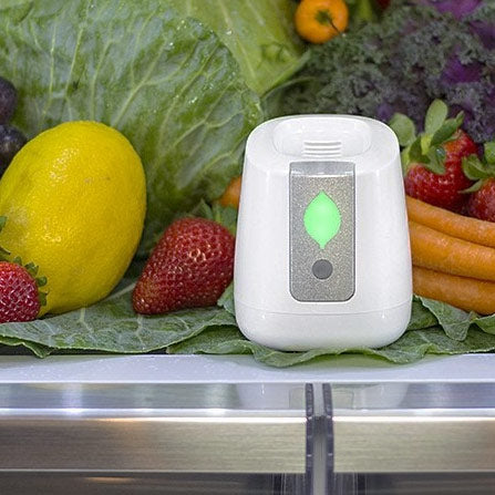 pureAir - FRIDGE - Refrigerator Purification Device