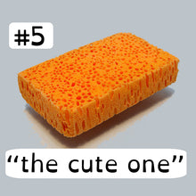 Load image into Gallery viewer, Bio Sponge #5 The Cute One