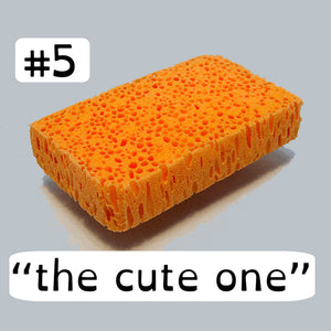 Bio Sponge #5 The Cute One