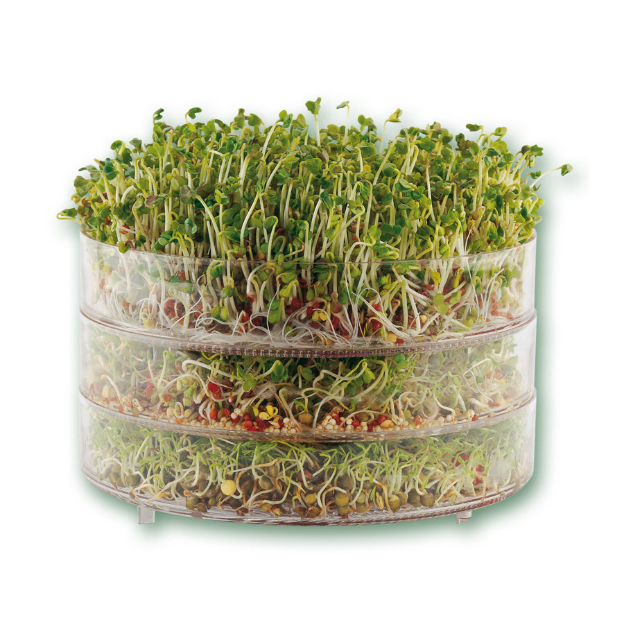 bioSnacky Classic 3-Tier Sprouter, with grown sprouts in it