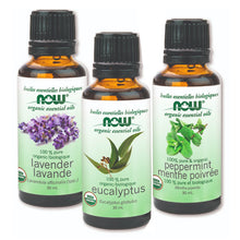 Load image into Gallery viewer, Several types of NOW Organic Essential Oil in of 30 ml bottles