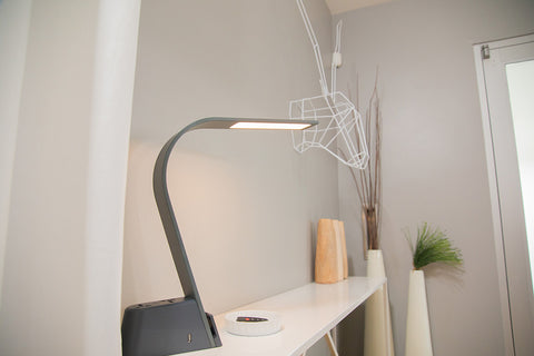 LUX LED Lighting Brooklyn AC Task Light