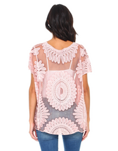 Blush embroidered lace designer top