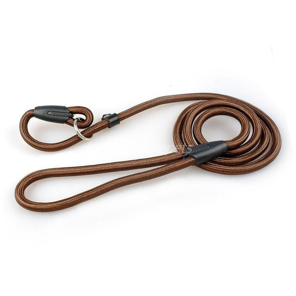 Nylon Dog Training Leash