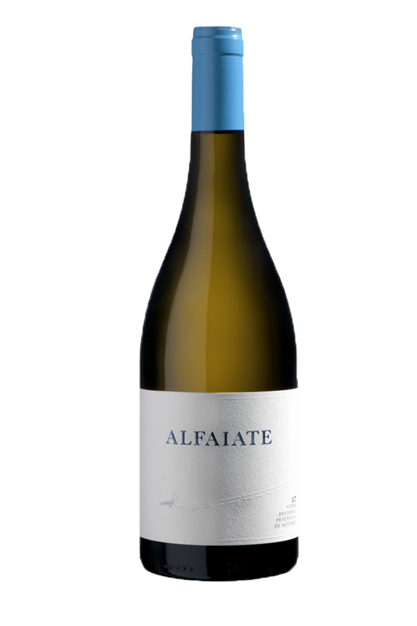 2019 Herdade do Portocarro Alfaiate