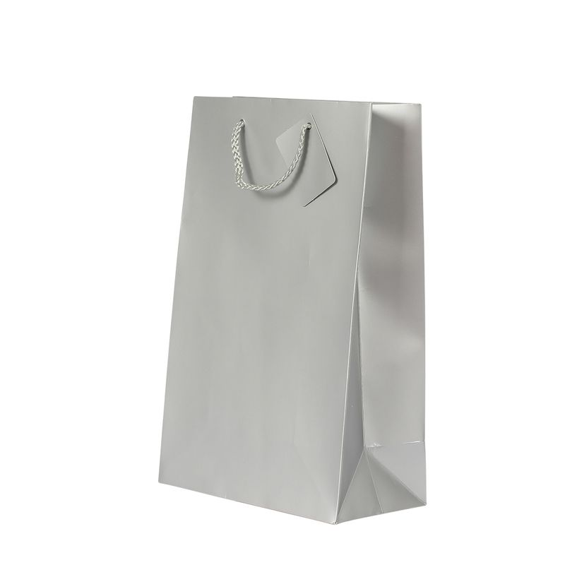 2 Bottle Gift Bag