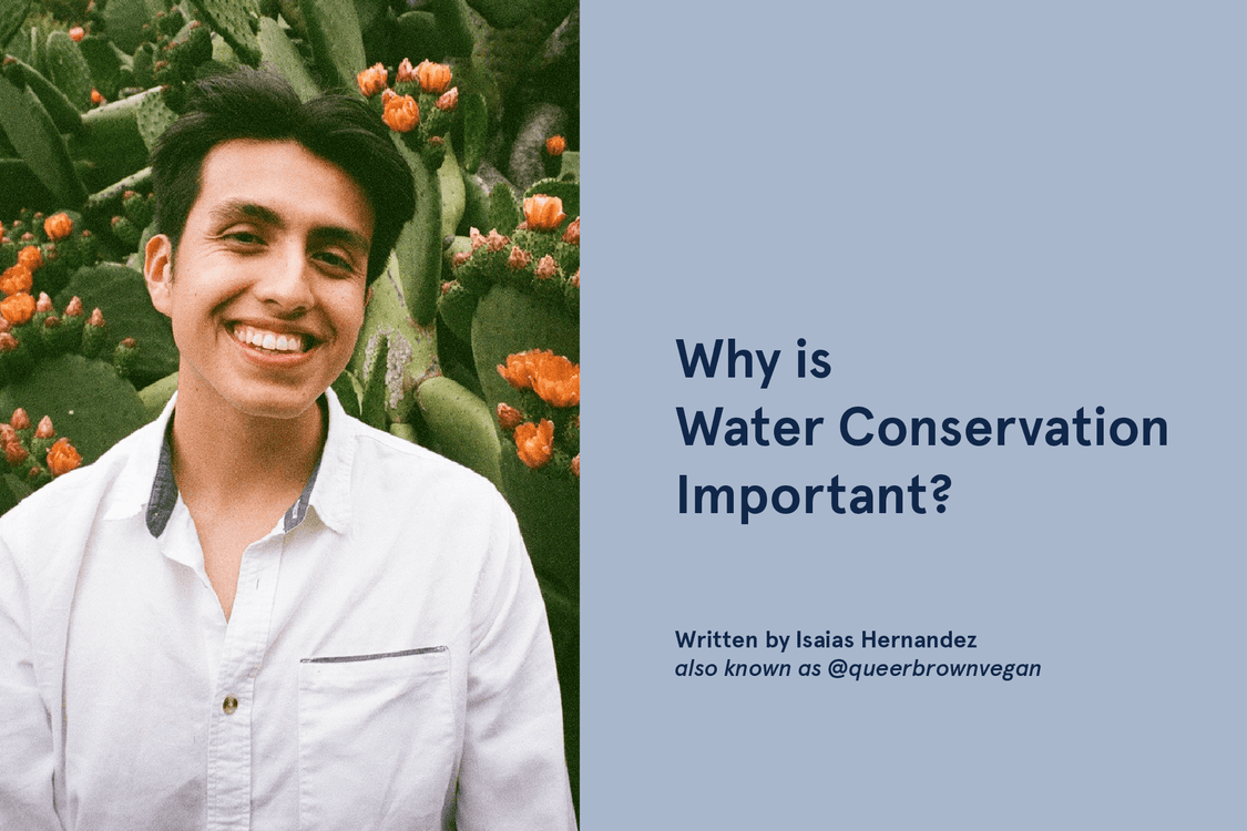 Why is Water Conservation Important?