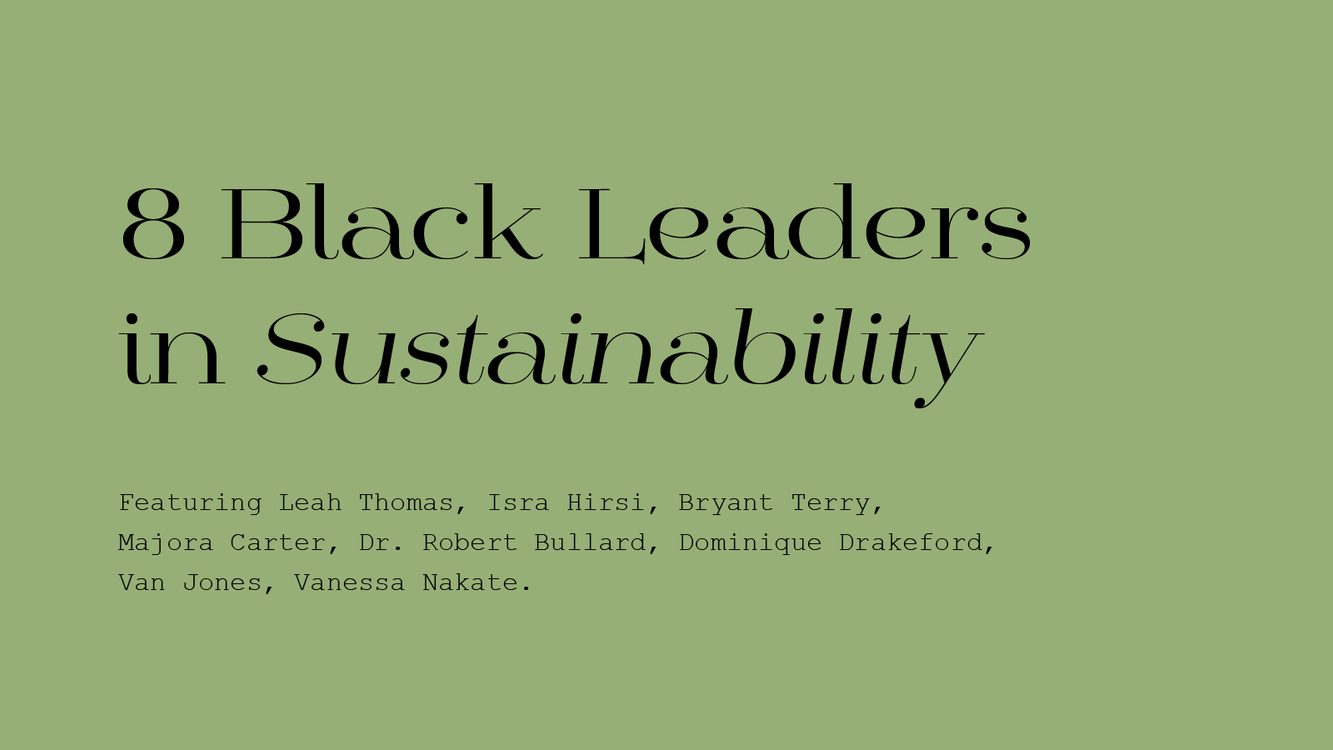 8 Black Leaders in Sustainability