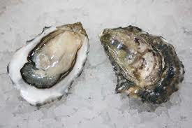 Fanny Bay Oysters (Fresh)