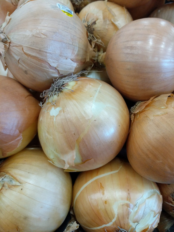 Trader Joe's Yellow Onions