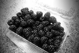 Trader Joe's Fresh Blackberries