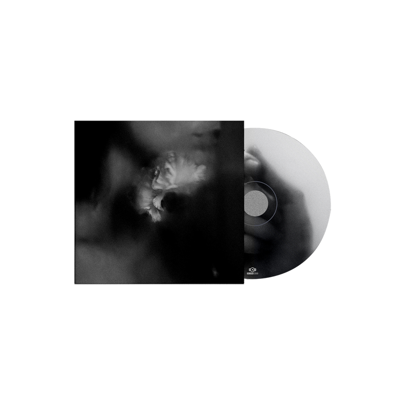 Holding Absence - 'Permanent/Dream of Me' Picture Disc 7