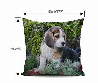Beagle Pillow Size