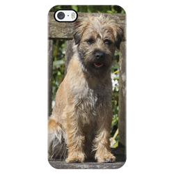 Border Terrier iPhone Case