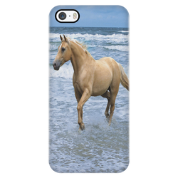 Palomino On The Beach iPhone Case