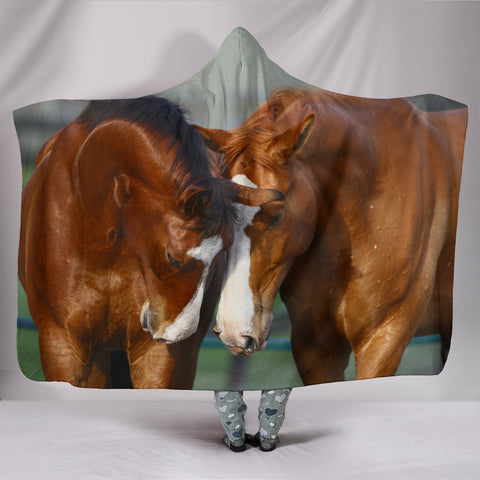 Best Friends Hooded Blanket