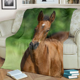 Adorable Baby Horse Fleece Blanket - Brown and Green TV Blanket - Exclusively Licensed Artwork - 3 Sizes - Youth, Large, X-Large