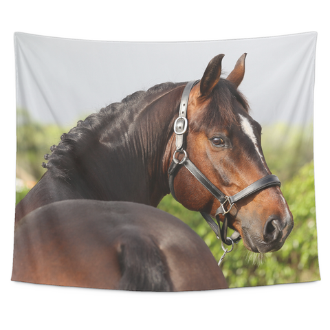 Who Me?  Horse Wall Art Tapestry