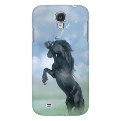 Friesian in the Mist Galaxy Case