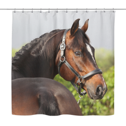 Who Me?  Horse Shower Curtain