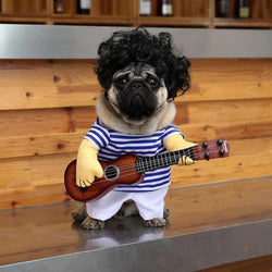 Adorable Cosplay Guitar Player Costume for Cats and  Small Dogs - Perfect for Halloween