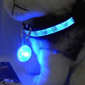 Dog Led Night Safety Flash Light Collar - Blue / M