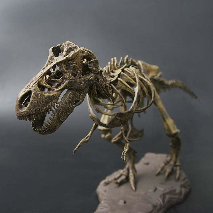Tyrannosaurus Rex (T-Rex) Diy Model Set - 60 Pieces - T-Rex Fossil Set 2 Feet - Trex Diy Model Set