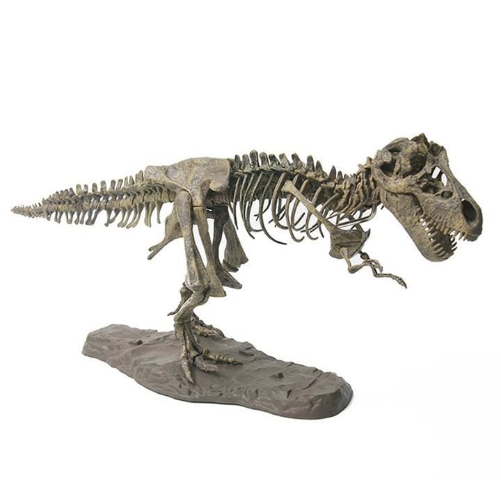 Tyrannosaurus Rex (T-Rex) Diy Model Set - 60 Pieces - Trex Diy Model Set