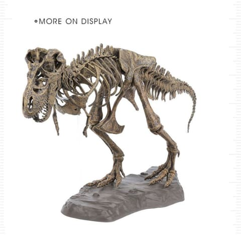 Tyrannosaurus Rex (T-Rex) Diy Model Set - 60 Pieces