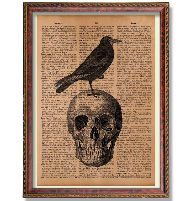 Crow and skull print Anatomy poster Old dictionary page - Antique Prints