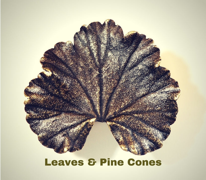 Leaves & Pine Cones
