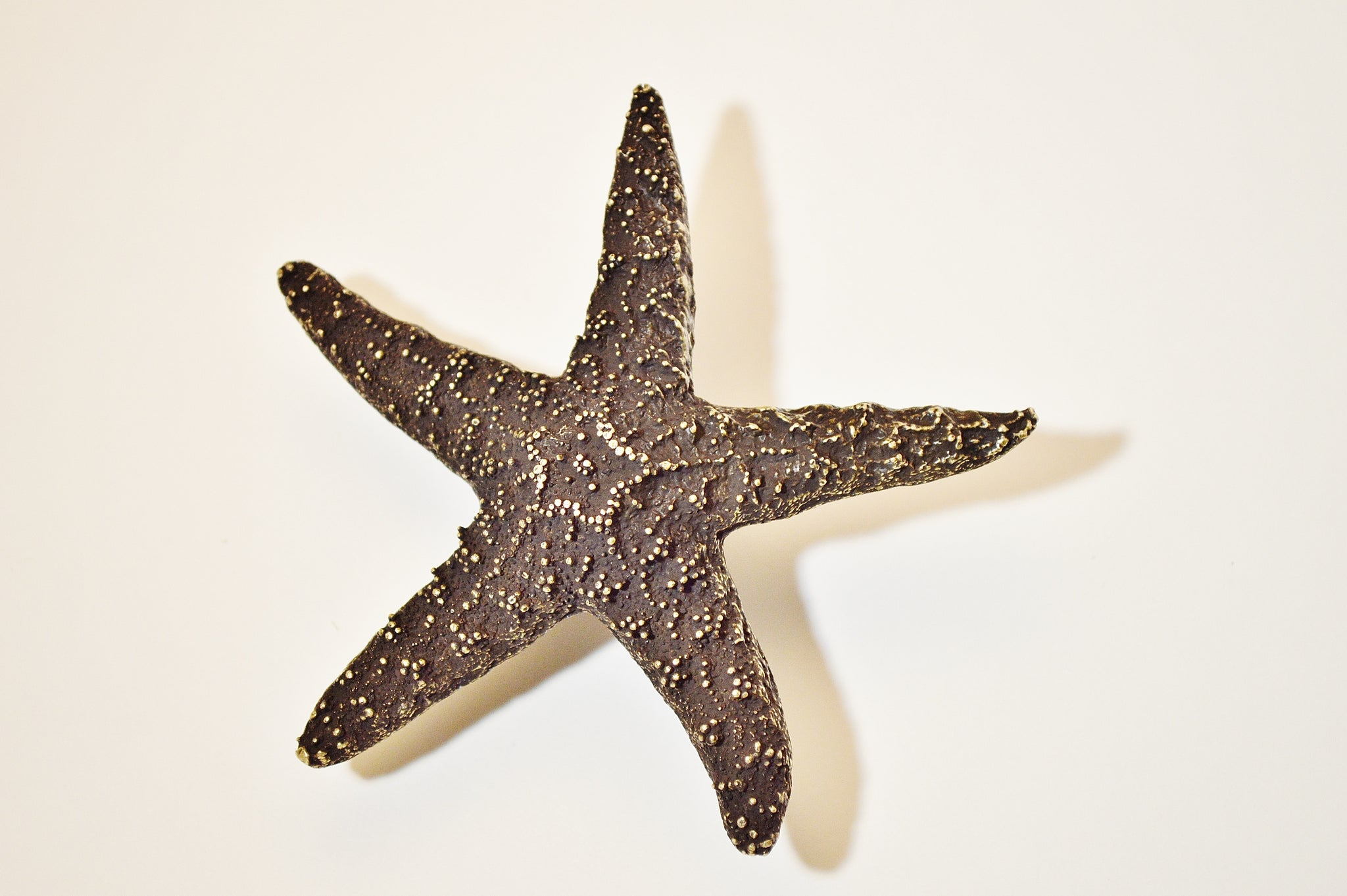 Starfish Knob (Large)