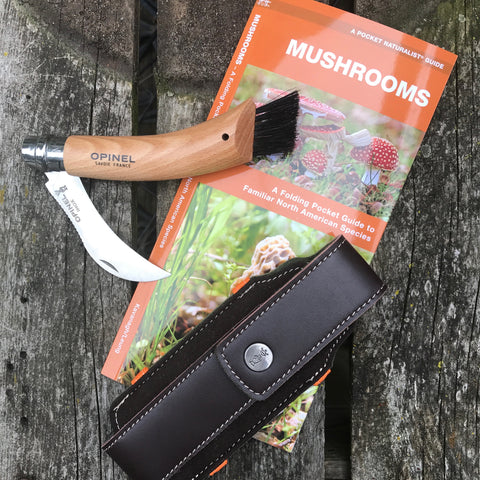 mushroom field guide and knife set
