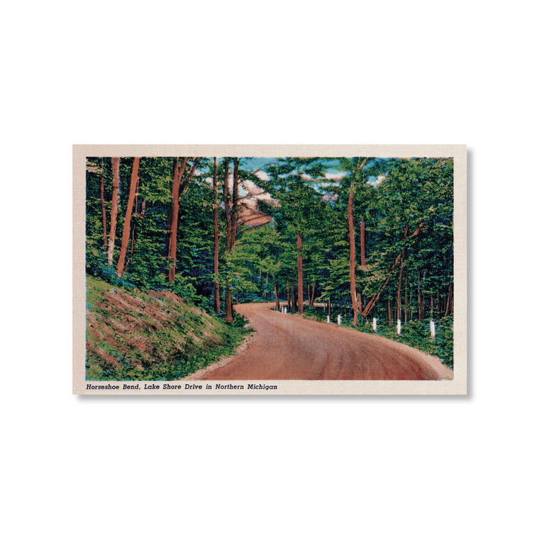 Horseshoe Bend Tunnel of Trees M-119 Postcard