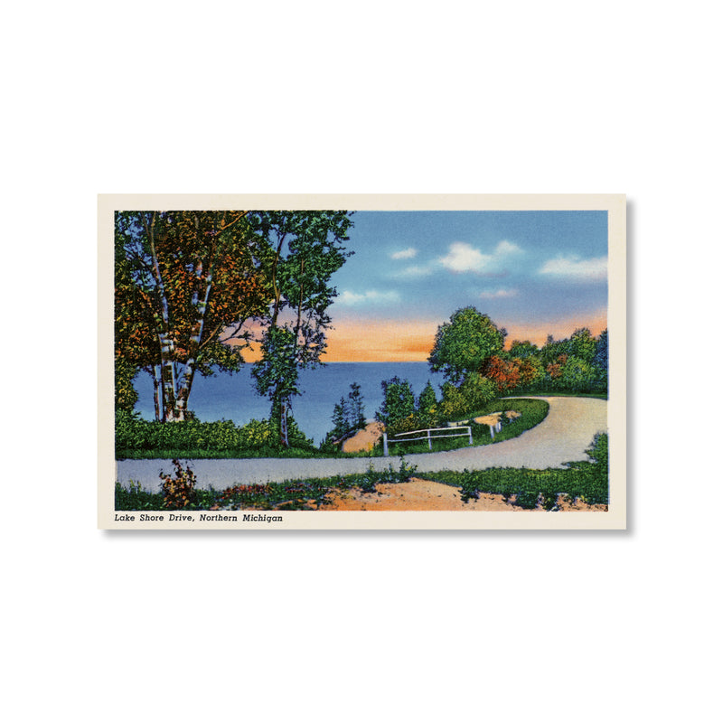 Lake Shore Drive Tunnel of Trees M-119 Postcard