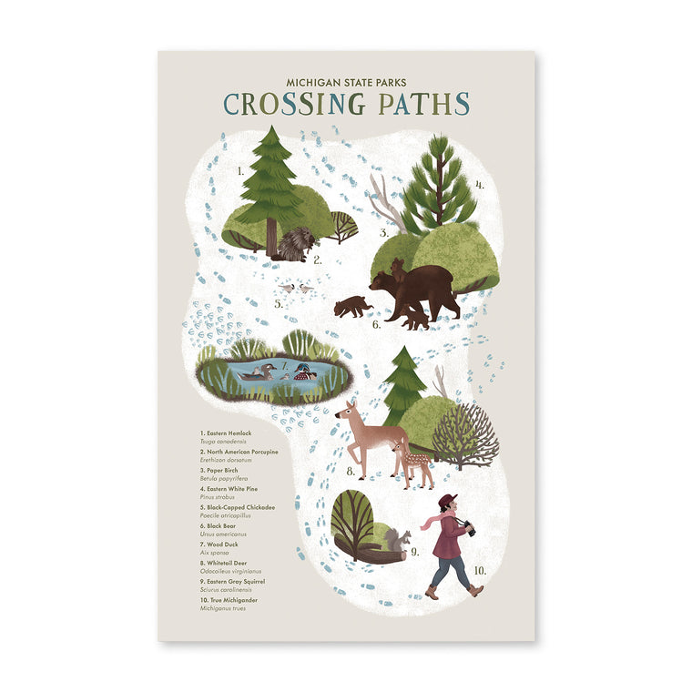 Michigan State Parks Crossing Paths Print
