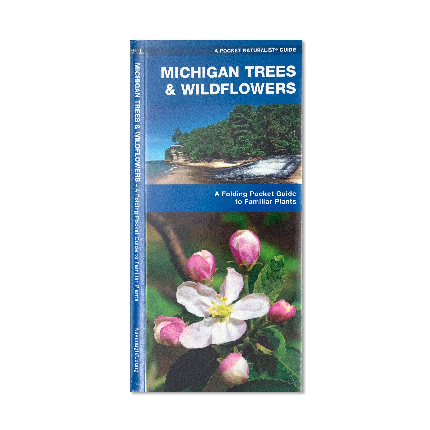 Michigan Trees & Wildflowers Pocket Guide